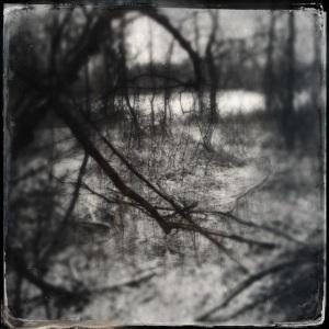 A Hipstamatic winter wonderland!